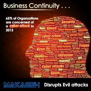 Business Continuity Institute & BSI Report 2013